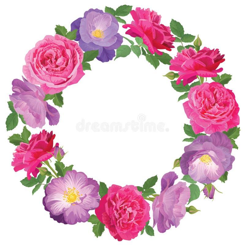 Bloemkader met rozen op witte achtergrond stock illustratie