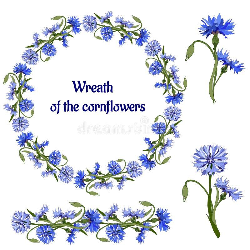 Bloemkroon van vaselk Reeks blauwe bloemen op een witte achtergrond Vectorborstel voor decoratie van kaarten, groeten en uitnodig royalty-vrije illustratie