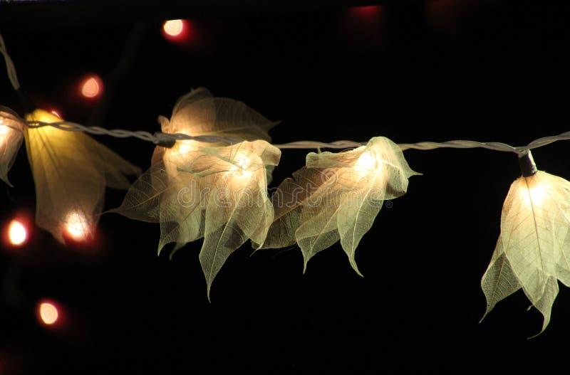 Bloemlichten stock afbeelding