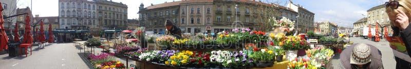 Bloemmarkt in Zagreb, Kroatië royalty-vrije stock afbeeldingen