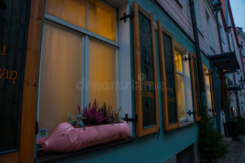 Bloempot in de vorm van een roze varken Straat in de oude stad Estlands Kapitaal, Tallinn stock foto's
