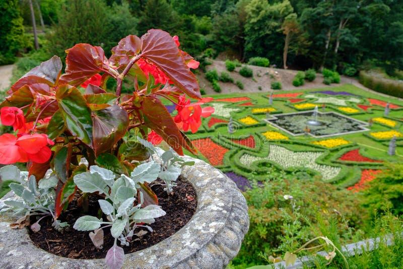 Bloempot en tuinen bij Lyme-Zaal in Piekdistrict, Cheshire, royalty-vrije stock foto