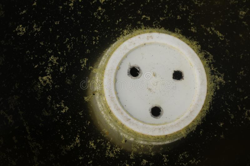 Bloempot in water stock foto