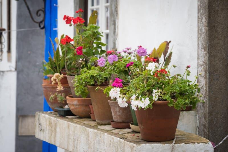 Bloempotten voor oud huis stock afbeelding