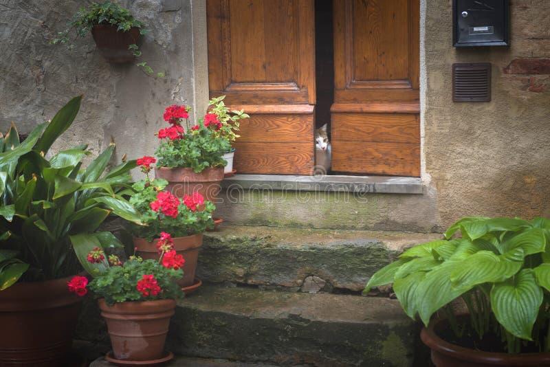 Bloemrijke straten op een regenachtige de lentedag in een klein magisch dorp Pienza royalty-vrije stock fotografie