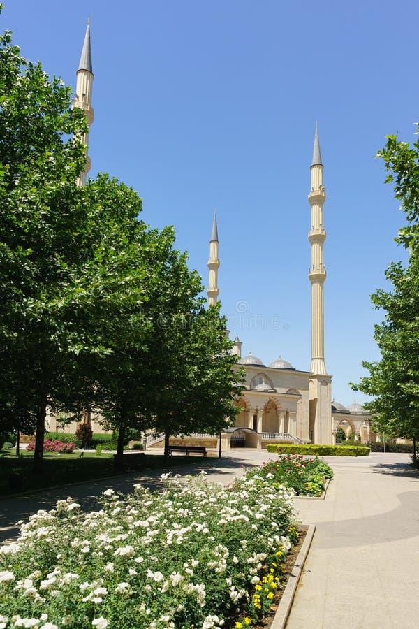 Bloemsteeg die tot het hart van Akhmat Kadyrov van de moskee van Tchetchenië leiden royalty-vrije stock foto