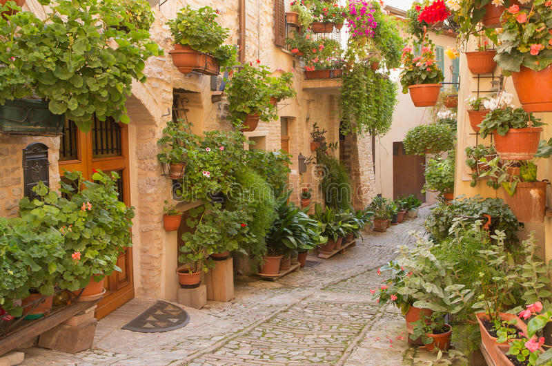 Bloemstraat in de stad van Spello (Umbrië, Italië) stock foto's