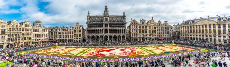 Bloemtapijt 2016 in Brussel stock foto's
