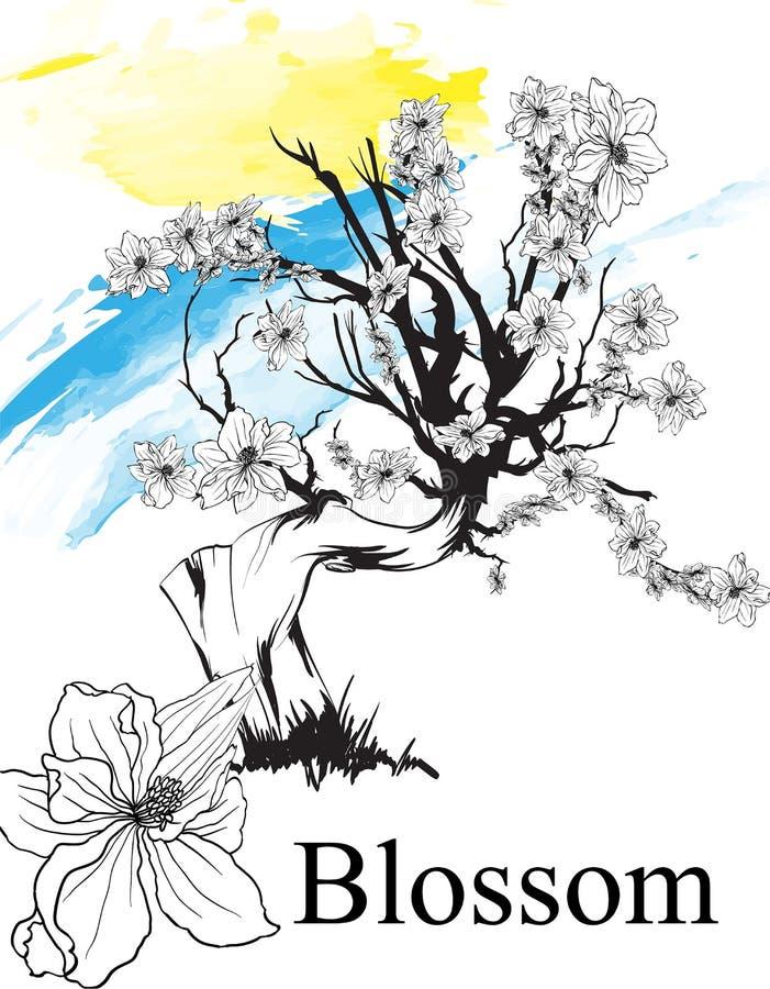 bloemtekeningen Schets van Kersenbloesem of Sakura met lijn-kunst op witte achtergronden met de hand wordt getrokken die Vectorsc stock illustratie