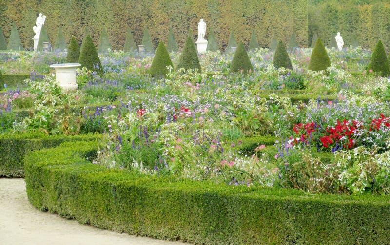 Bloemtuin in Versailles, Parijs, Frankrijk stock foto's