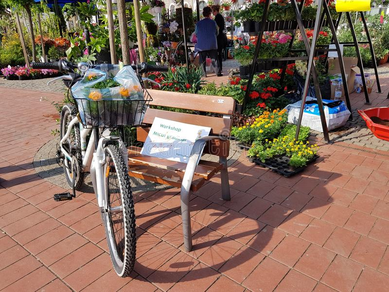 Bloemvreugde op fiets stock foto's