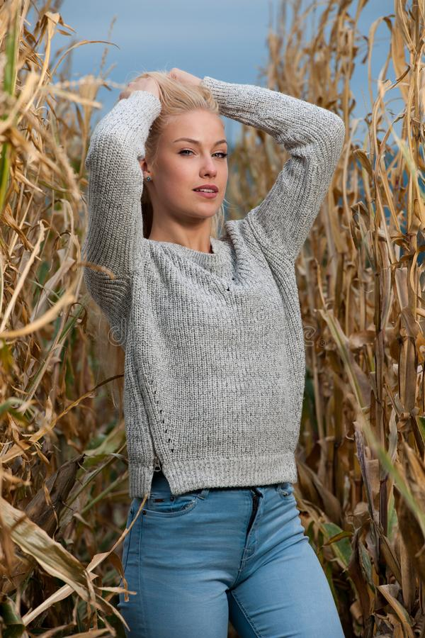 Blog style fashion photo of cute blond woman on corn field in late autumn. Blog style fashion photo of cute blond woman on corn field in late aun royalty free stock image