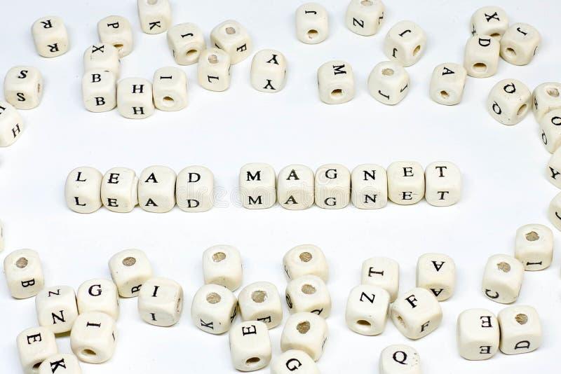 Bloggendes Online-Werbung des elektronischen Geschäftsverkehrs E-Mailund ABC-Führungsmagnet des Social Media-Marketingbegriffs hö stockfotos