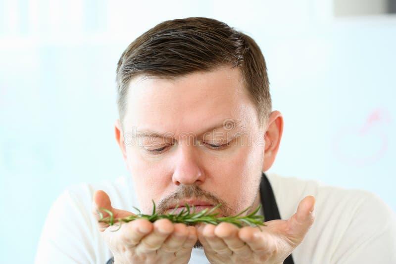 Bloggerskäggkock Smelling Aromatic Rosemary Herb arkivbild