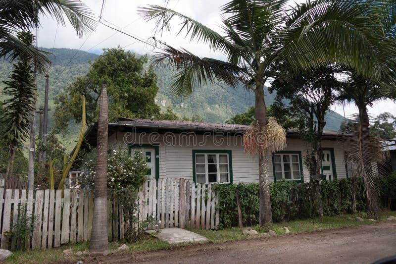 Blokhuis dat door palmen en andere bomen wordt omringd royalty-vrije stock fotografie