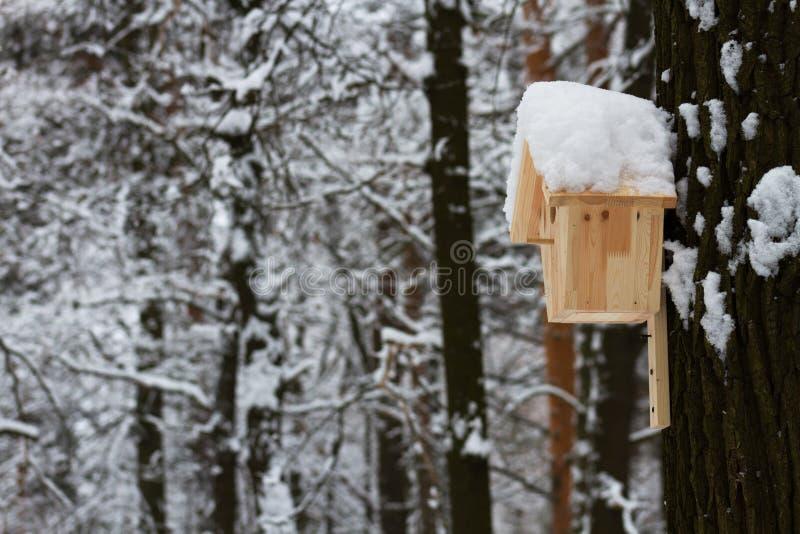 Blokhuis voor de vogels in de winterpark stock afbeeldingen