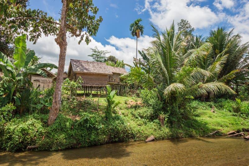 Blokhuizen op stelten met palm op riverbank in Indonesië stock fotografie