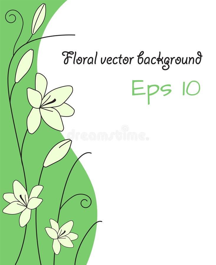 Blom- abstrakt bakgrund med blommaljus för vit lilja - grön cu royaltyfri illustrationer