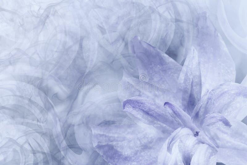 Blom- abstrakt ljus - grå färg - vit-violett bakgrund Kronblad av en lilja blommar på enviolett frostig bakgrund Närbild flöde royaltyfria bilder