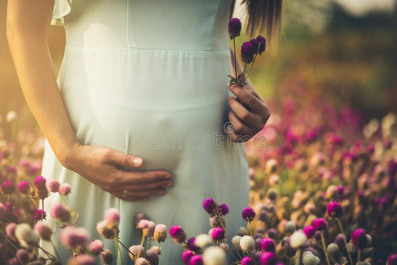 Blom av nytt liv arkivfoton
