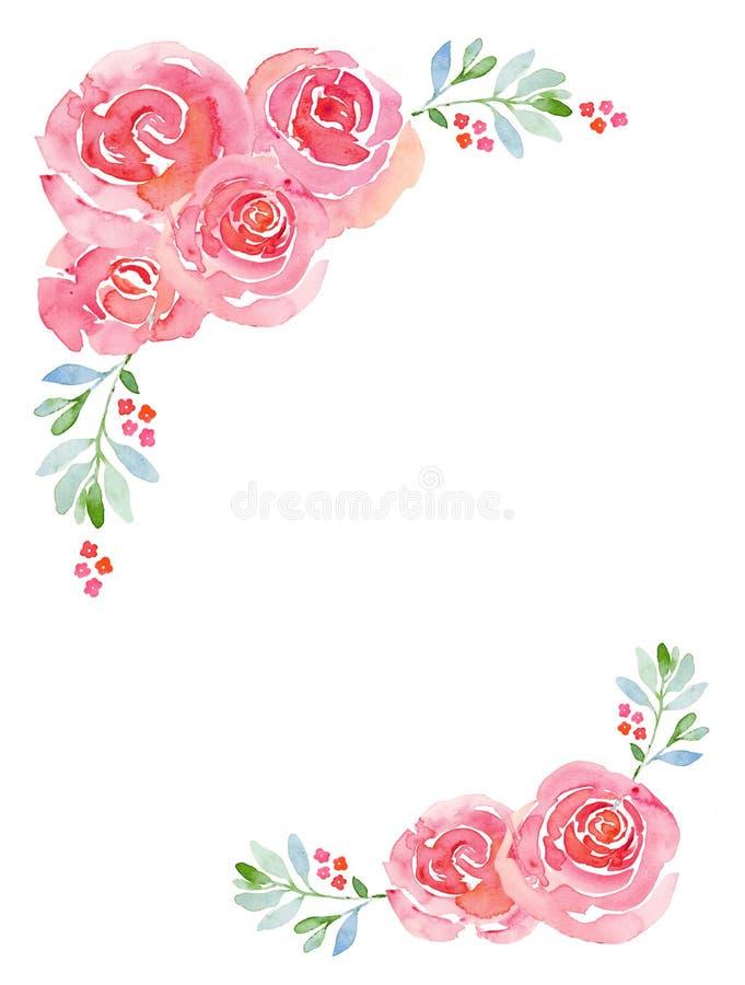 Blom- bakgrund för rosa rosvattenfärg stock illustrationer