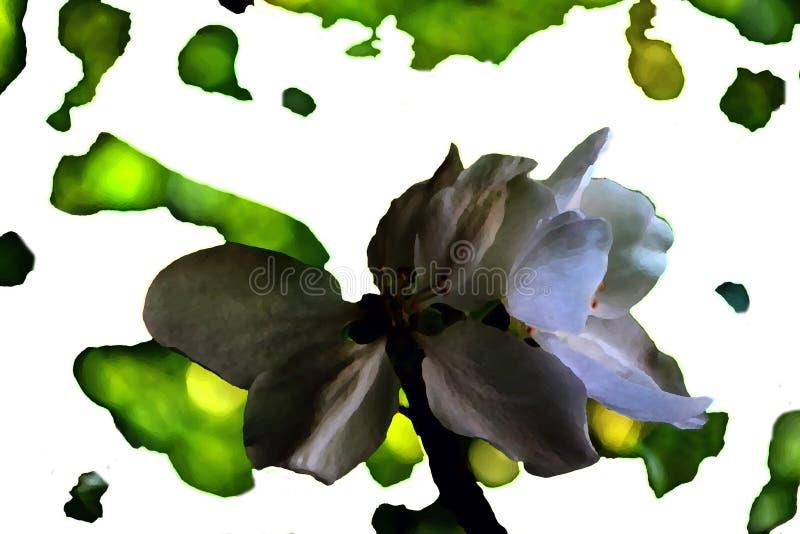 Blom- bakgrund i härliga gröna skuggor vektor illustrationer