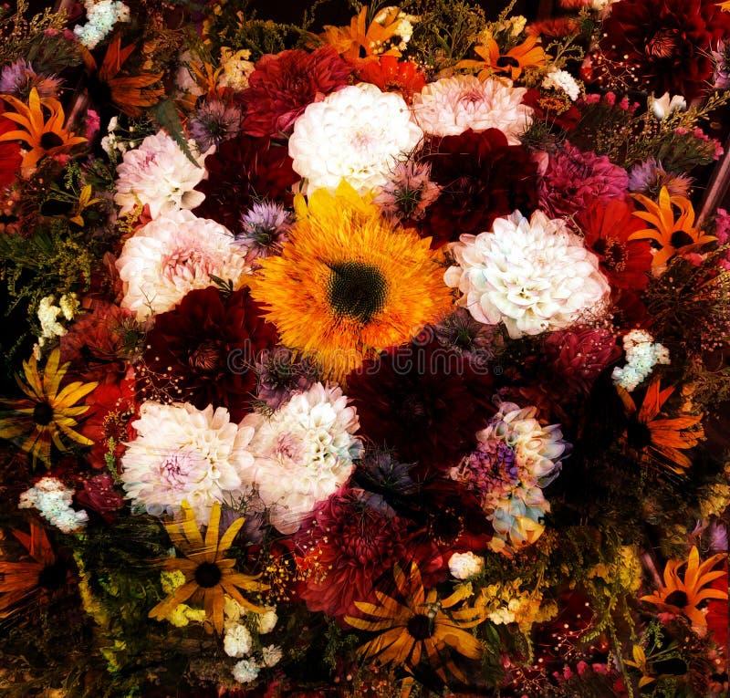 Blom- bakgrund med den stiliserade buketten av dalia, zinnia, solros royaltyfri illustrationer