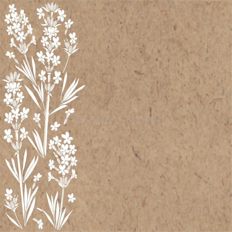 Blom- bakgrund med lavendelblommor och ställe för text Vektorillustration på ett kraft papper Inbjudan hälsningkort royaltyfri illustrationer