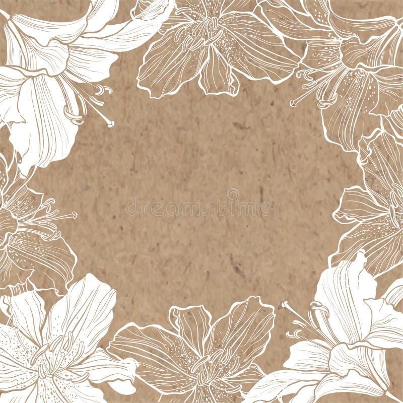 Blom- bakgrund med liljan på kraft papper Hand-dragit ovalt flöde stock illustrationer