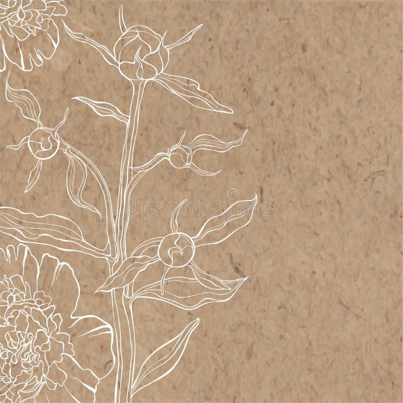 Blom- bakgrund med pionen på kraft papper Kan hälsa bilen royaltyfri illustrationer