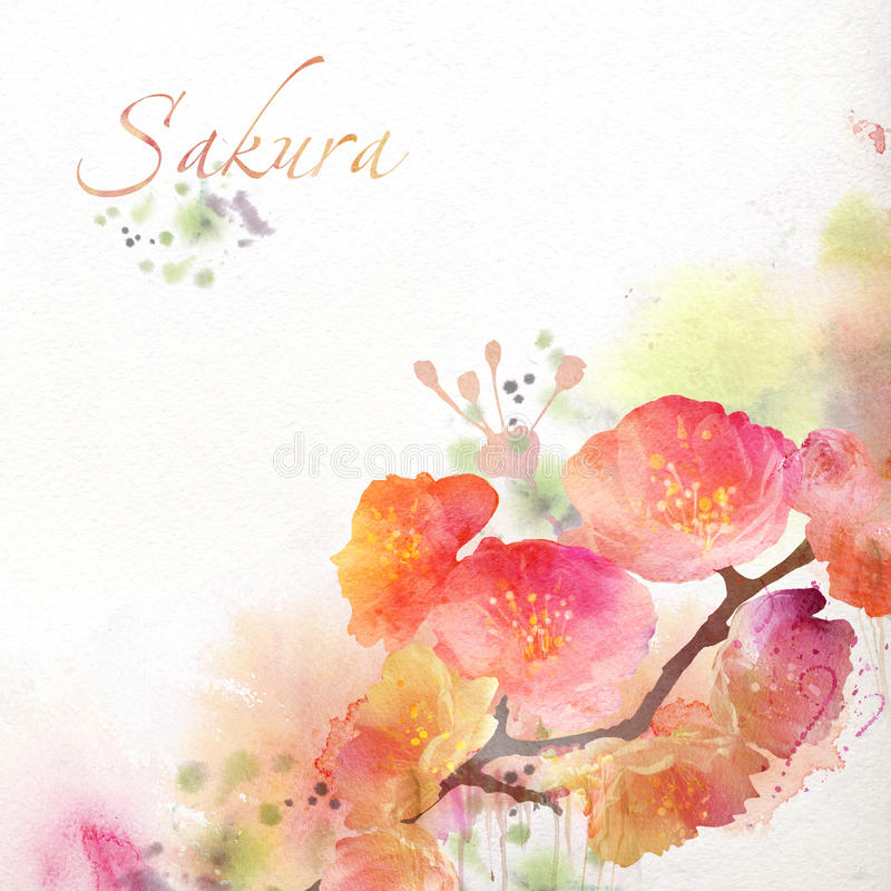 Blom- bakgrund med vattenfärgen sakura royaltyfri illustrationer