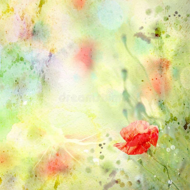 Blom- bakgrund med vattenfärgvallmor stock illustrationer