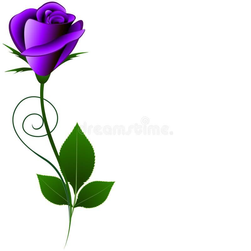 Blom- bakgrund med violeten steg royaltyfri illustrationer