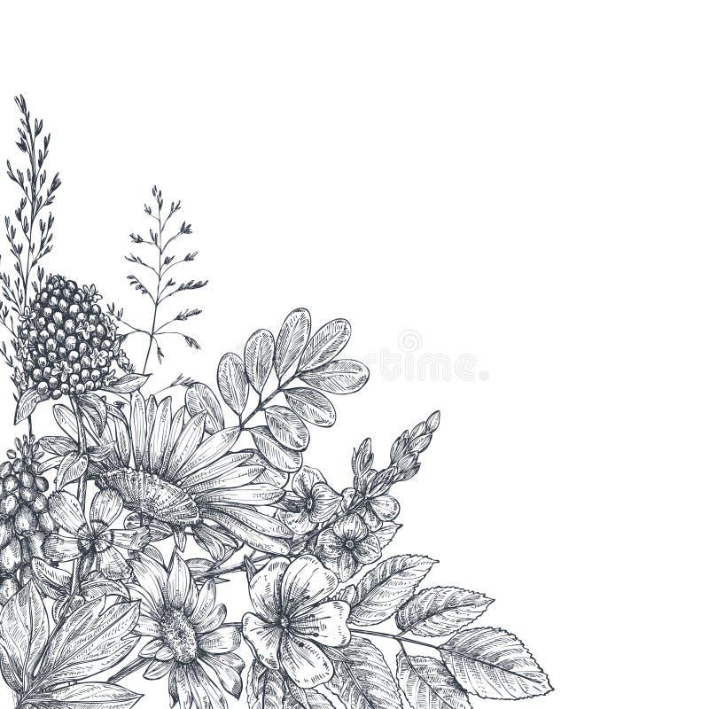 Blom- bakgrunder med den drog handen blommar och växter vektor illustrationer