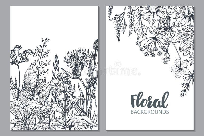 Blom- bakgrunder med hand drog örter och vildblommor stock illustrationer