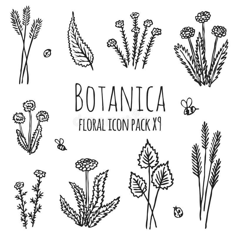 Blom- Botanica - stiliserat för monokromsvart för nio objekt bestå för symbol fastställt av växter, blommor och kryp royaltyfri illustrationer