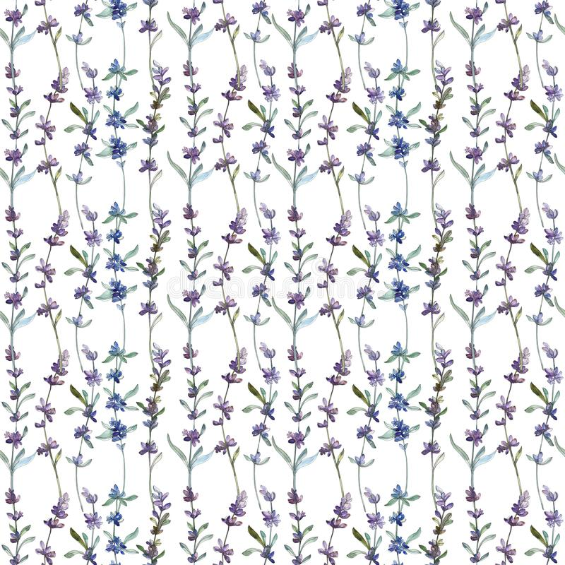 Blom- botanisk blomma f?r purpurf?rgad lavendel Upps?ttning f?r vattenf?rgbakgrundsillustration Seamless bakgrund m?nstrar arkivbilder
