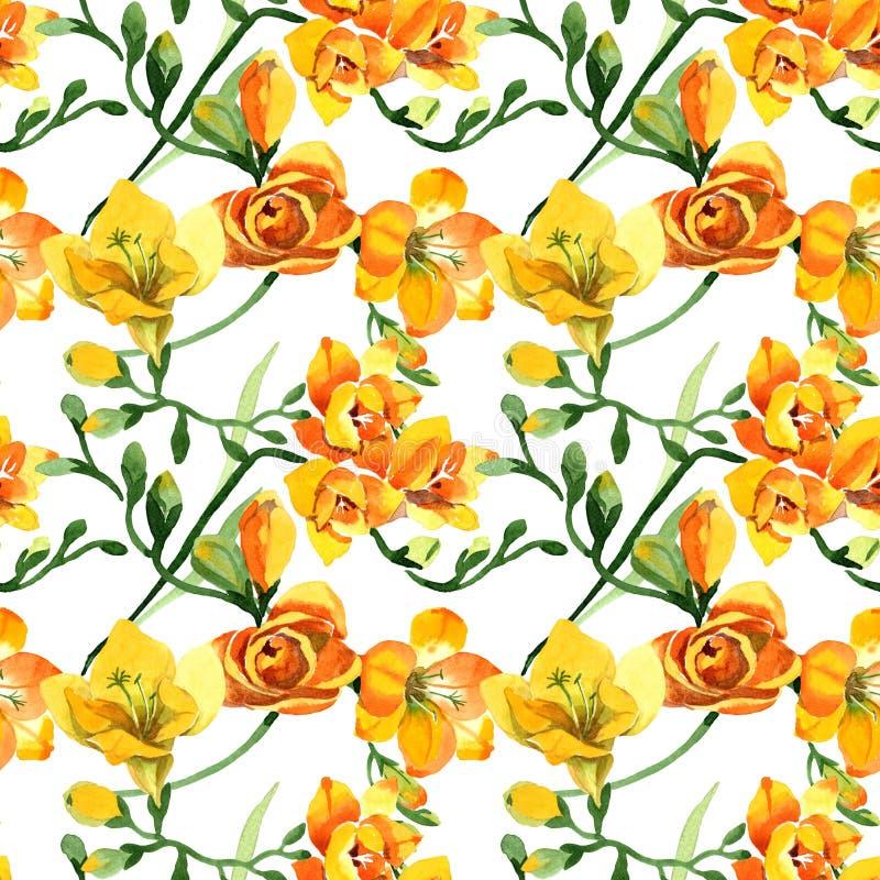 Blom- botaniska blommor för gul freesia För ackgroundillustration för vattenfärg b uppsättning Seamless bakgrund m?nstrar royaltyfri bild