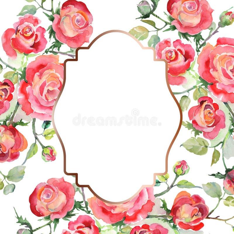 Blom- botaniska blommor f?r r?d rosa bukett Upps?ttning f?r vattenf?rgbakgrundsillustration Fyrkant f?r ramgr?nsprydnad royaltyfri fotografi