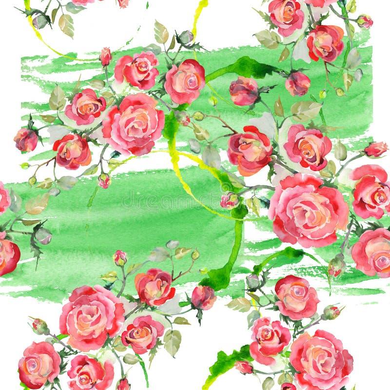 Blom- botaniska blommor f?r r?d rosa bukett Upps?ttning f?r vattenf?rgbakgrundsillustration Seamless bakgrund m?nstrar arkivbilder