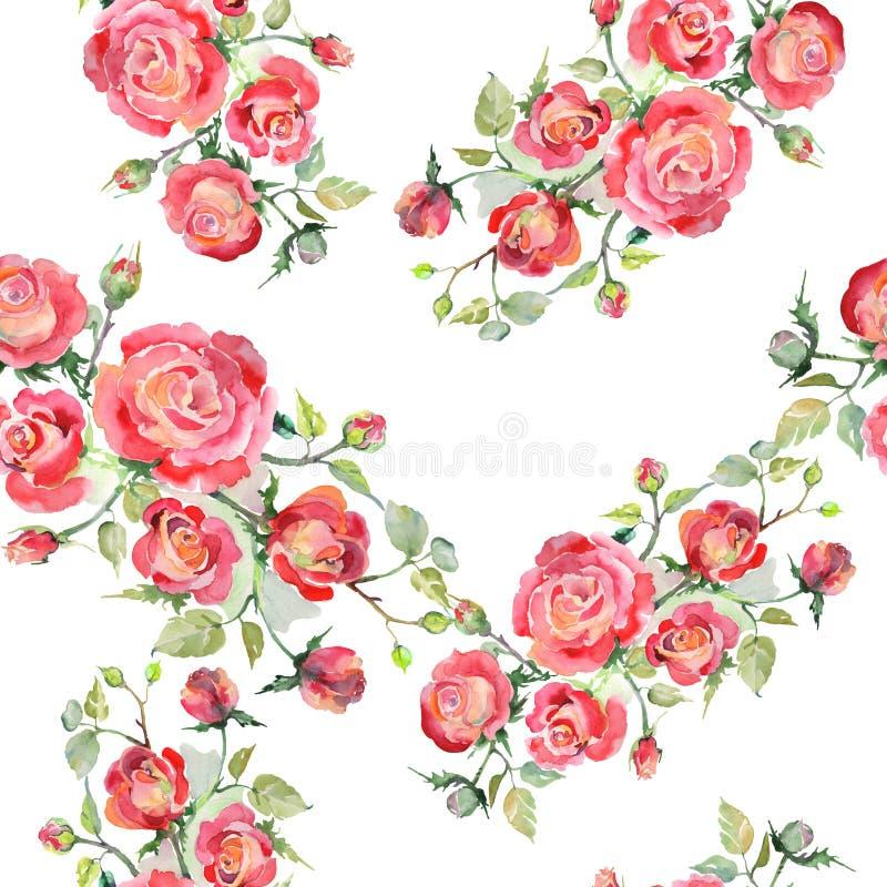 Blom- botaniska blommor f?r r?d rosa bukett Upps?ttning f?r vattenf?rgbakgrundsillustration Seamless bakgrund m?nstrar royaltyfri bild