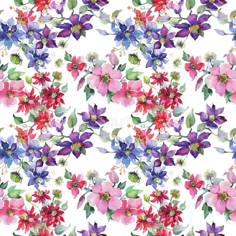 Blom- botaniska blommor f?r klematisbukett Upps?ttning f?r vattenf?rgbakgrundsillustration Seamless bakgrund m?nstrar stock illustrationer