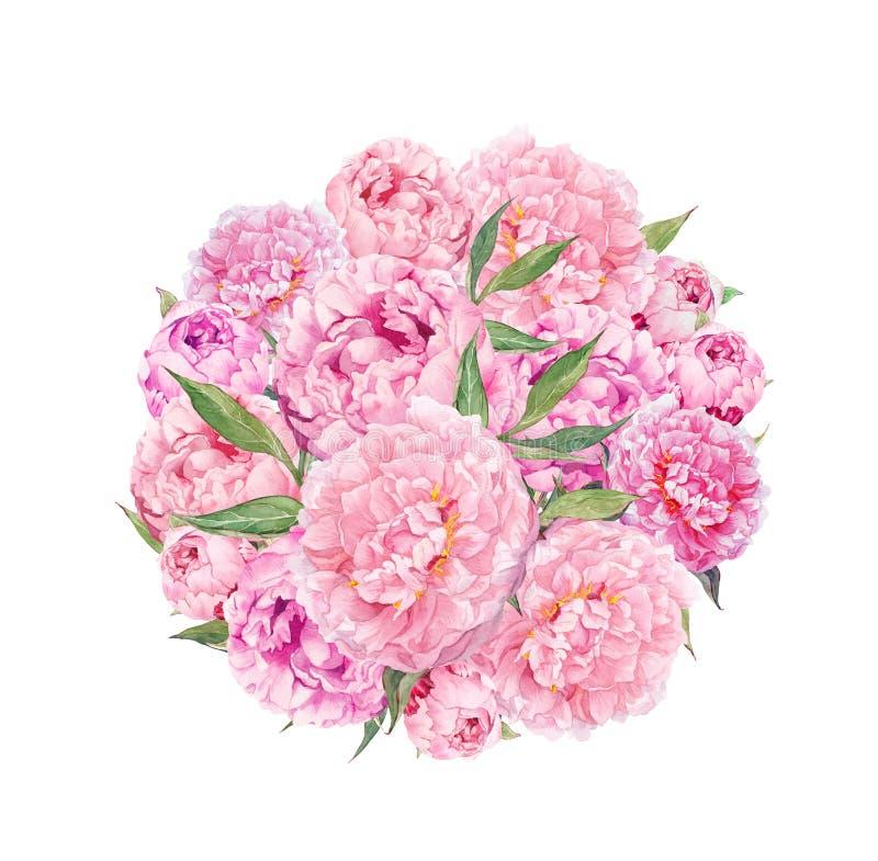 Blom- cirkelbakgrund - rosa pionblommor vattenfärg stock illustrationer