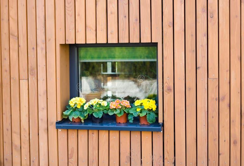 Blom- fönster royaltyfria foton