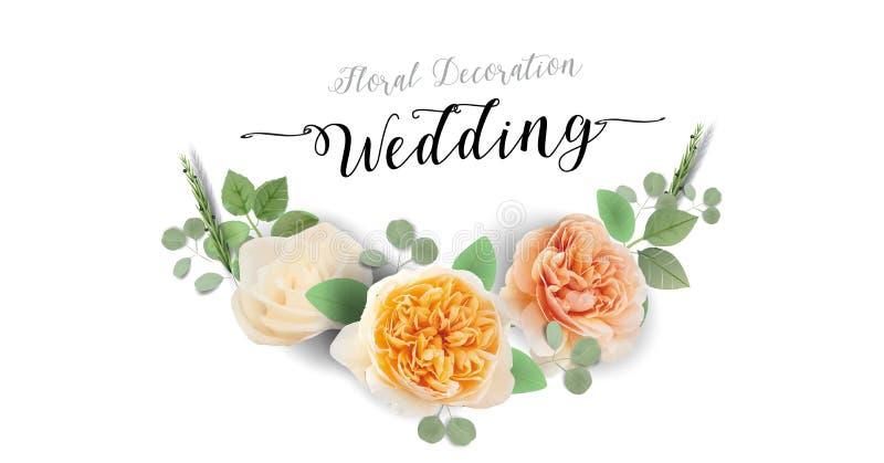 Blom- gifta sig inbjudan, tacka dig - vattenfärgen söta Juliet Roses för designen för kortmallen den moderiktiga stock illustrationer