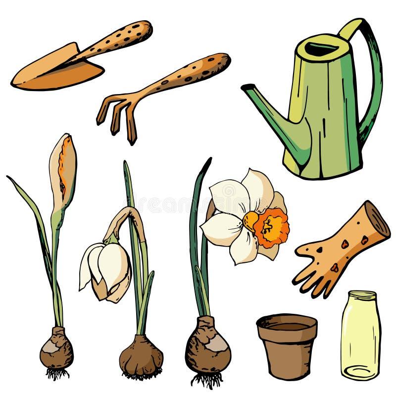 blom- illustrationvektor royaltyfri illustrationer