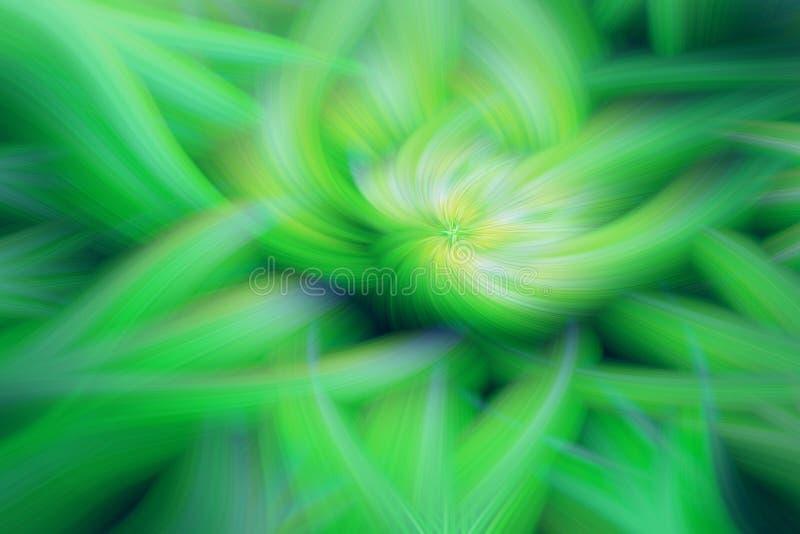 Blom- konst f?r fractalbakgrundsprominens fantasi stock illustrationer