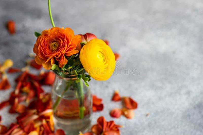 Blom- kort f?r sommar royaltyfria bilder
