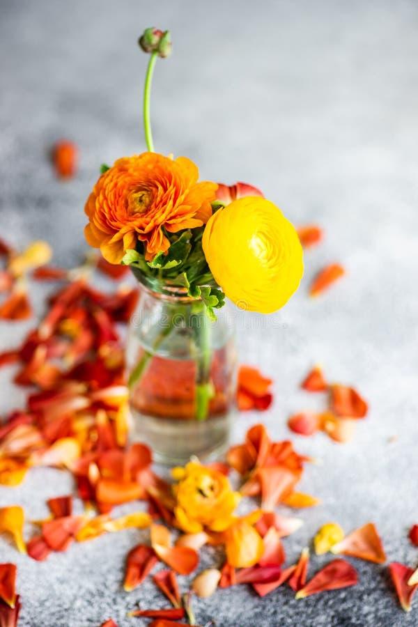 Blom- kort f?r sommar royaltyfria foton