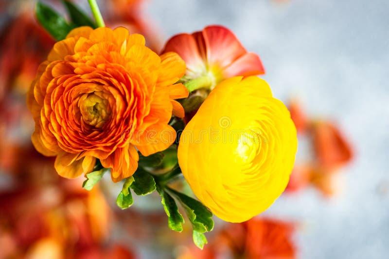 Blom- kort f?r sommar royaltyfri fotografi